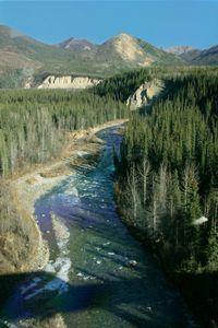 Alaska_railroad_095
