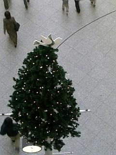 もうクリスマス!